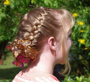 Butterfly Clips Braids