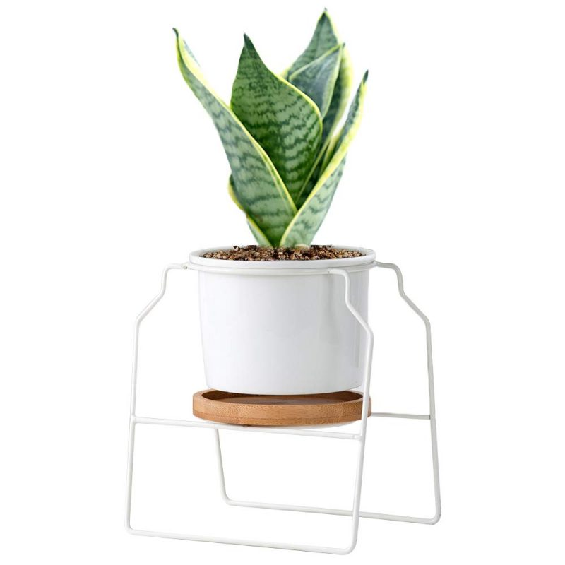 Desktop Planter Vase